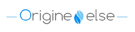 logo origine-else.com