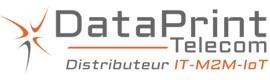 dataprint logo
