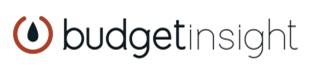 logo budgetinsight