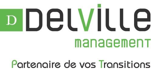 logo delville management