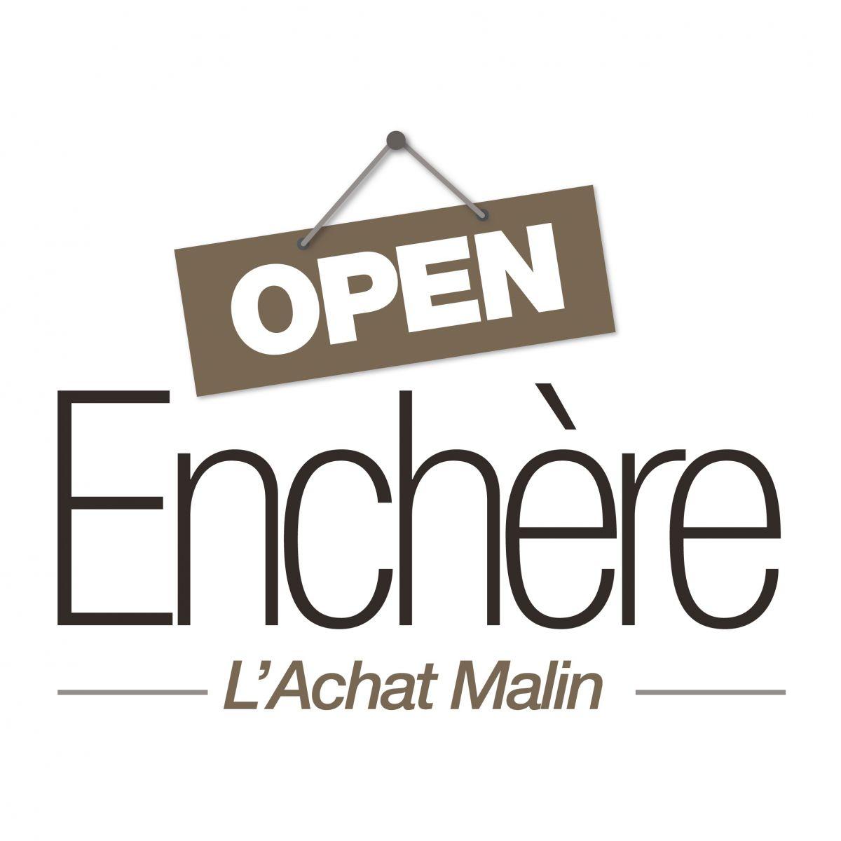 image open enchere