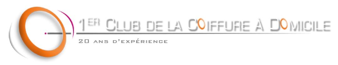 logo vincent lefrançois